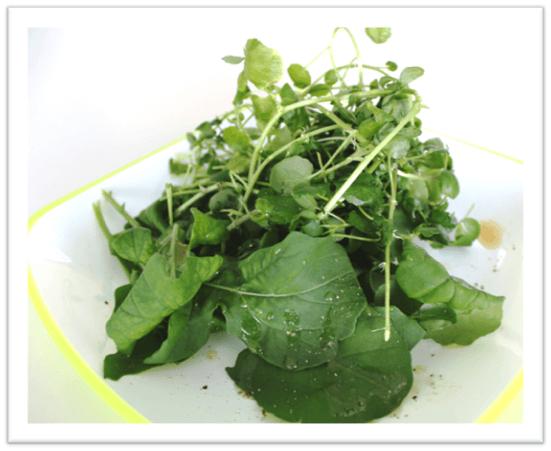 秦野名水で育てた味わい香味サラダ